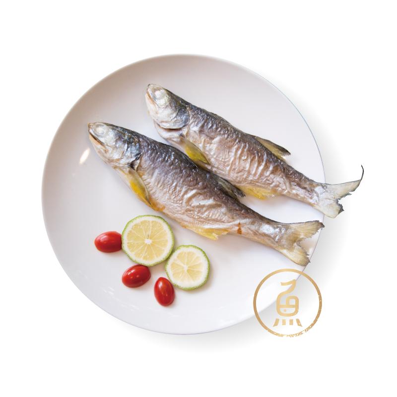 生態午仔魚